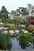 Japanese Garden : Japanese Garden in Long Beach